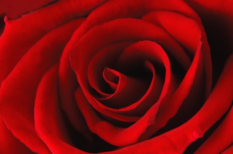 Liebesgeschenke sollen persönlich und individuell ausgewählt werden