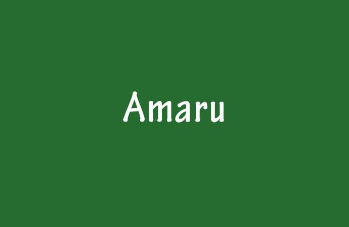 Der Name Amaru