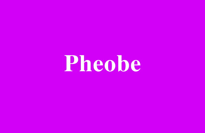 Der Mädchenname Pheobe